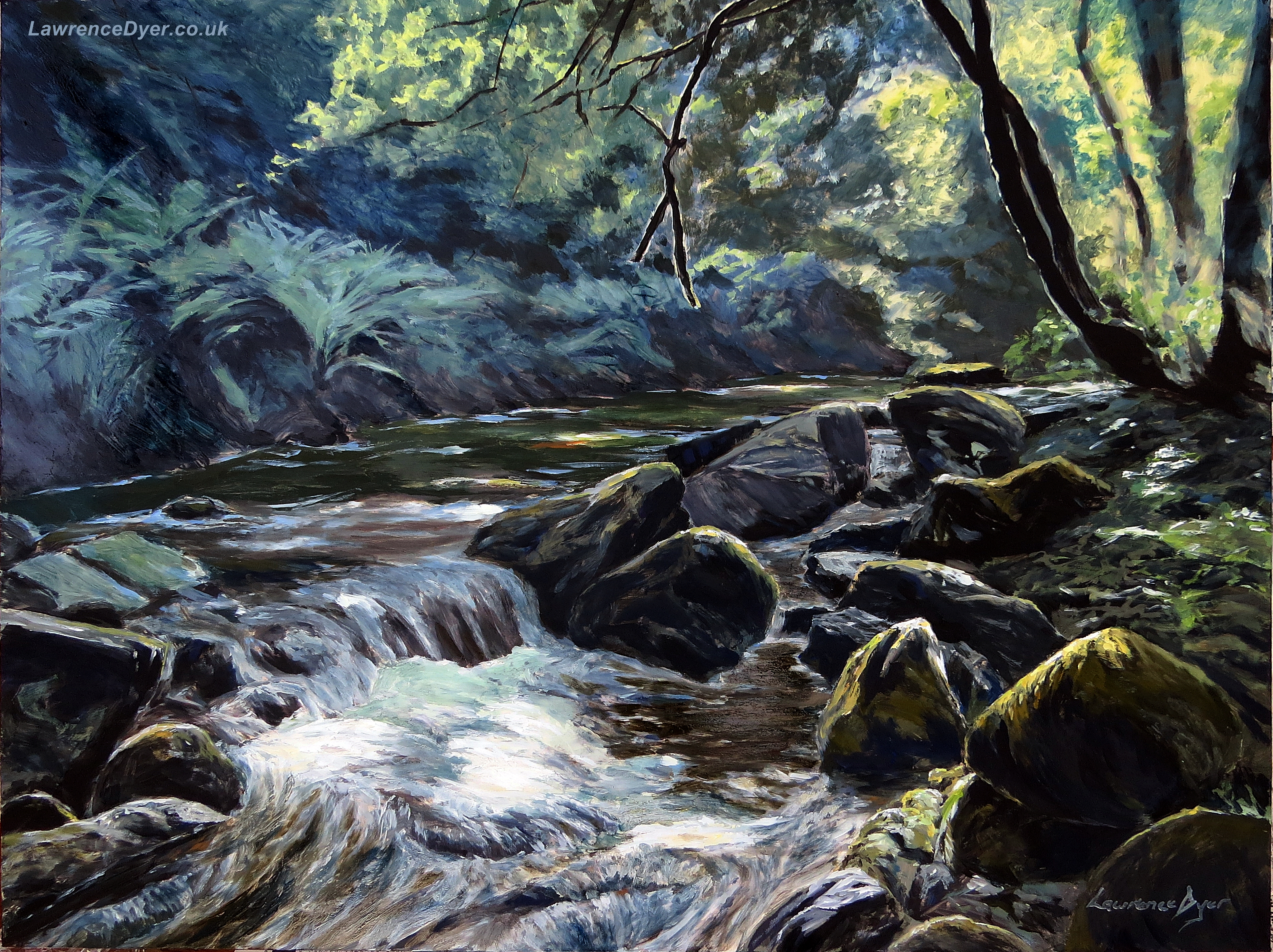 River Taw Sticklepath by Lawrence Dyer